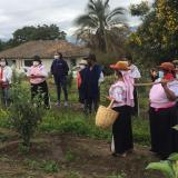 Latinoamérica, la región donde más crece la inseguridad alimentaria por COVID