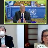 ONU confirma reducción de 9% en cultivos de coca