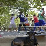 Uno de los improvisados gimnasios en los que se forman boxeadores en Barranquilla.