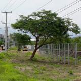 Suspenden obras de proyecto urbanístico en Caujaral