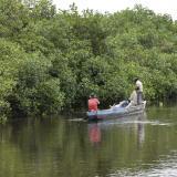 Senadores dicen que se está desviando el agua  de los ríos que descienden de la Sierra a la Ciénaga Grande.