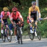 El Tour de Francia 2020 se encuentra disputado por cuatro colombianos y dos eslovenos tras 14 etapas.