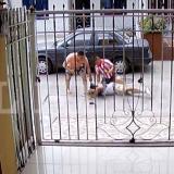 Instantes en que el policía y un vecino intentan reducir al señalado delincuente.