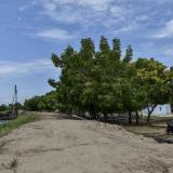 En video | La erosión se 'come' las riberas del Magdalena