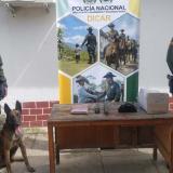 Agente canino descubre envío de marihuana en Montería
