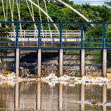 Basuras que se encuentran en el arroyo León, allí desemboca la mayor parte de los arroyos de la ciudad.