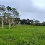 Anuncian ampliación de zonas libres de despojo en el sur de Córdoba