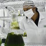Unisimón, entre las mejores en investigación según Ranking U-Sapiens
