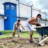 Internos de la cárcel La Vega inician construcción de huertas