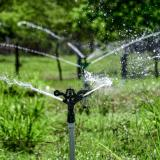 En video | Distritos de riego, clave para reactivar la agroindustria