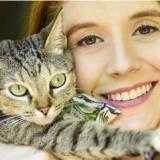Clementine, una gata querida en casa y en redes sociales