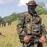 Las cifras del fenómeno paramilitar en Antioquia