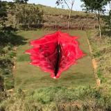 La gigantesca escultura de la vulva de una mujer desata polémica en Brasil