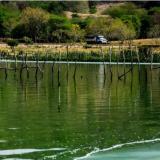 CRA adelanta proceso sancionatorio contra Aguas del Sur