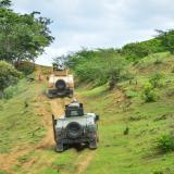 Una patrulla del Ejército en labores de vigilancia  en los Montes de María.