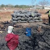 Policía los captura por hacer carbón ilegalmente