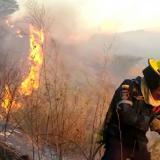 Incendios forestales tienen en jaque cerros y lotes de Santa Marta