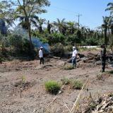 Llaman la atención a palmicultores por quema de residuos del cultivo
