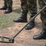 Uso de minas puede considerarse como crimen de guerra