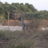 Zona intervenida en corregimiento de Sabanilla en Puerto Colombia.