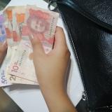 El 22 de febrero inicia el pago del Ingreso Solidario acumulado