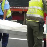 Una 'mula' lo mató en la Vía Alterna al Puerto de Santa Marta