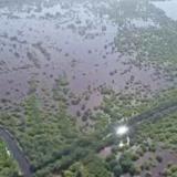 Por obras en caños, Ciénaga Grande recuperó 6.505 hectáreas de mangle