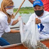 La gobernadora Elsa Noguera junto a un pescador.