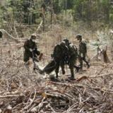 Procuradora investiga si se respetaron DD. HH. y DIH en Guaviare