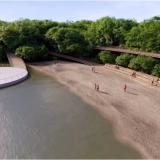 Restauración de la Ciénaga de Mallorquín, proyecto impulsado por el BID
