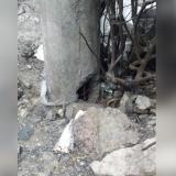 Denuncian vandalismo contra redes eléctricas en Barranquillita