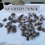 Hallan celulares, marihuana y licor en la cárcel de Montería