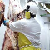 Exportaciones de carne en enero, las más altas en cuatro años