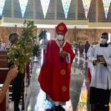 Domingo de Ramos sin palmas de cera, ni procesiones