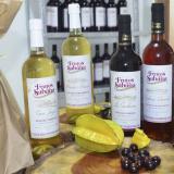 La desplazada que prepara vinos a base de frutas exóticas en Sincelejo
