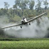 Gobierno firma decreto que reviviría la aspersión aérea