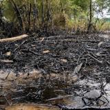 Comunidades reportan nuevo derrame de crudo en la Amazonía