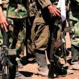ONU dice que cerca del 50% de ex-Farc participan en proyectos