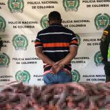 Capturan a traficante de fauna silvestre con 30 iguanas sacrificadas