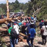 Grupo armado ataca minga indígena en Caldono, Cauca