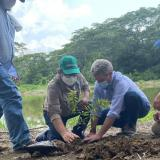 Buscan controlar erosión marina en el Golfo de Morrosquillo