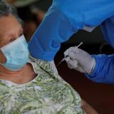 Gobierno acompañará a privados en compra de vacunas