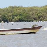 Con crédito de la AFD, Distrito financiará proyectos ambientales