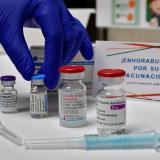 OMS: las vacunas aprobadas son eficaces contra todas las variantes de covid