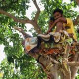 Le dio covid-19 y se aisló en un árbol para no contagiar a su familia