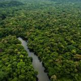 Indígenas hacían un uso responsable de la Amazonía Occidental hace 5.000 años