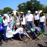 Jornada de siembra de árboles en Malambo