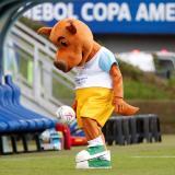 Copa América avanza con un 99 % de pruebas de covid-19 con resultados negativos