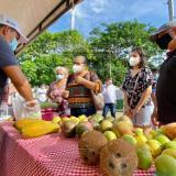 Exitosa realización de mercado campesino en Montería