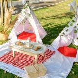 Pícnic, un plan para disfrutar en pandemia al aire libre